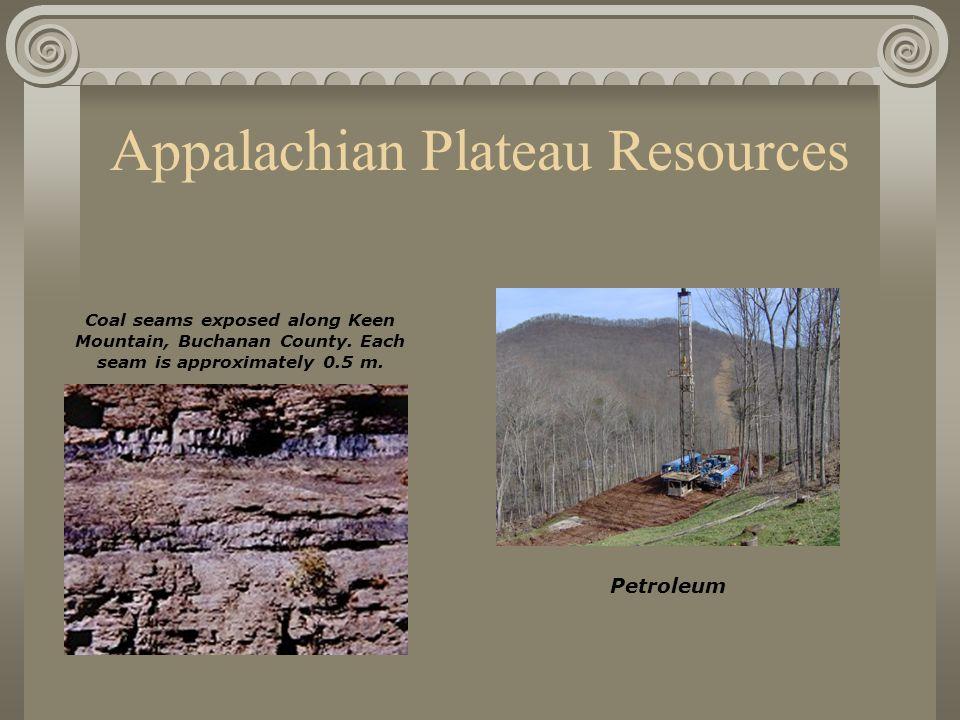 Appalachian Plateau Resources Coal seams exposed along Keen Mountain, Buchanan County. Each seam is approximately 0.5 m. Petroleum