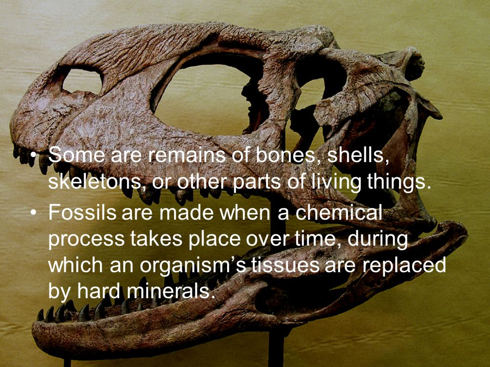 Some are remains of bones, shells, skeletons, or other parts of living things. Fossils are made when a chemical process takes place over time, during
