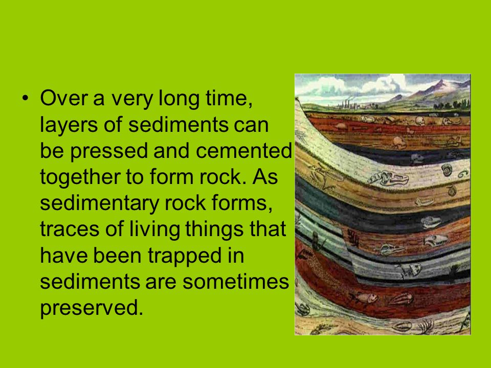 Over a very long time, layers of sediments can be pressed and cemented together to form rock. As sedimentary rock forms, traces of living things that