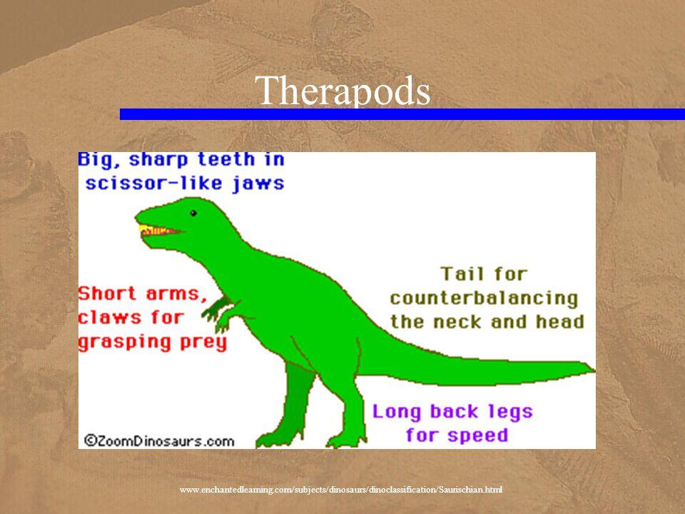 Therapods www.enchantedlearning.com/subjects/dinosaurs/dinoclassification/Saurischian.html