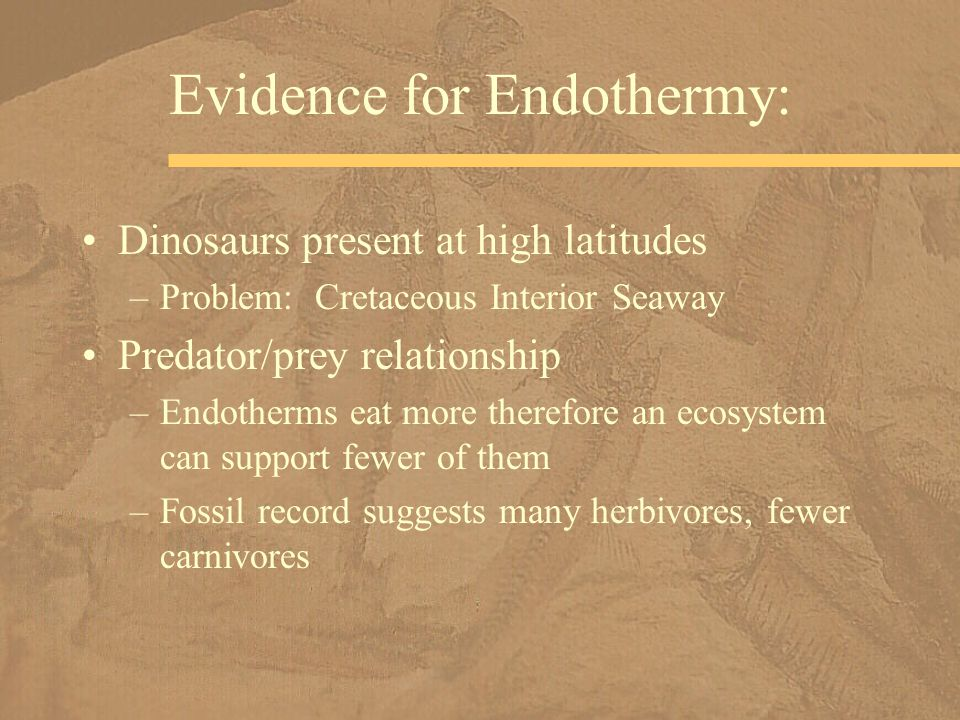 Evidence for Endothermy: Dinosaurs present at high latitudes –Problem: Cretaceous Interior Seaway Predator/prey relationship –Endotherms eat more ther