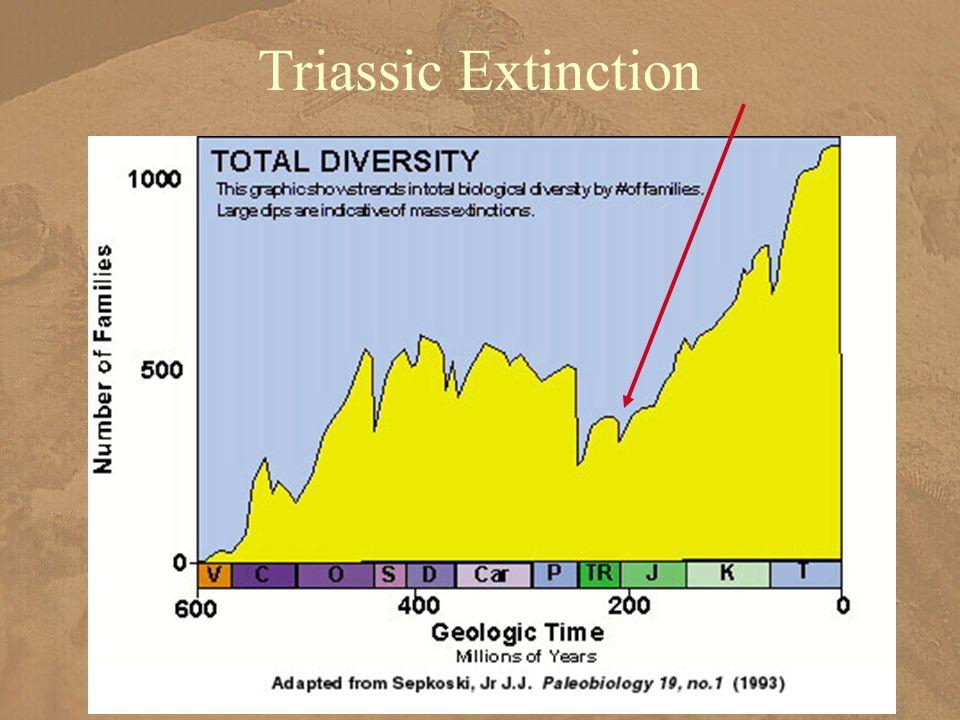 Triassic Extinction