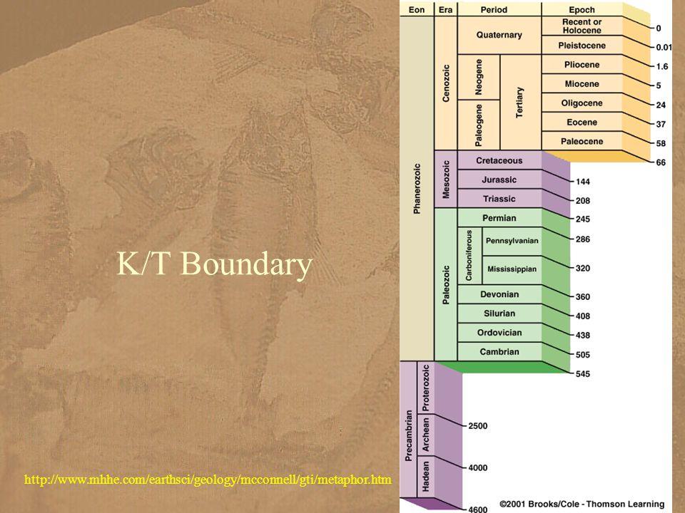 K/T Boundary http://www.mhhe.com/earthsci/geology/mcconnell/gti/metaphor.htm