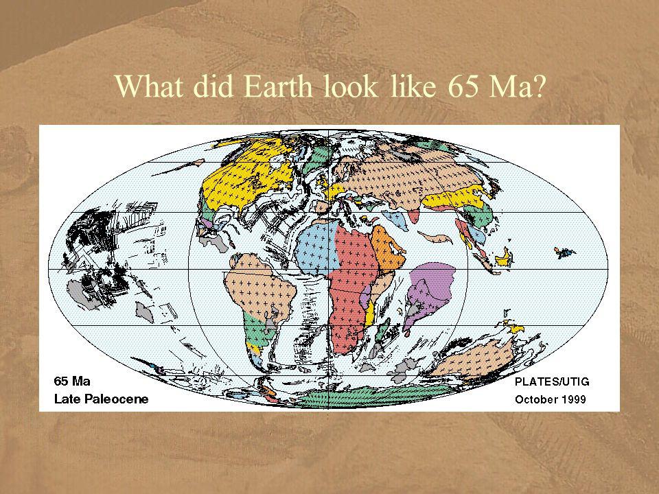 What did Earth look like 65 Ma