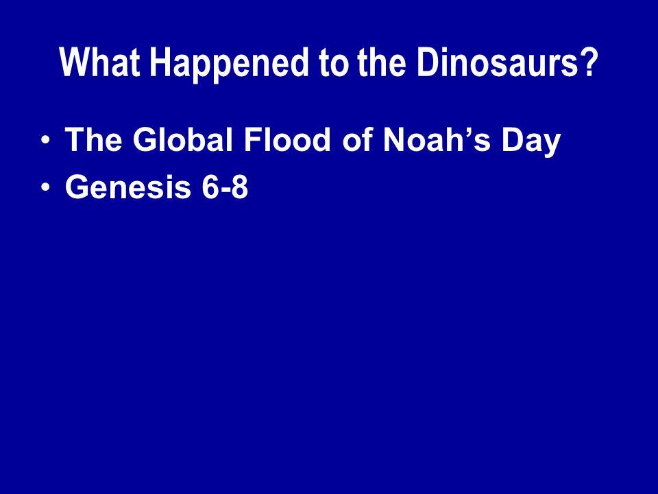 The Global Flood of Noah's Day Genesis 6-8