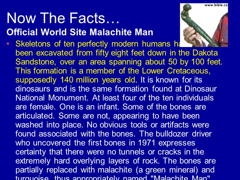 Now The Facts… Official World Site Malachite Man Skeletons of ten perfectly modern humans have been excavated from fifty eight feet down in the Dakota Sandstone, over an area spanning about 50 by 100 feet.