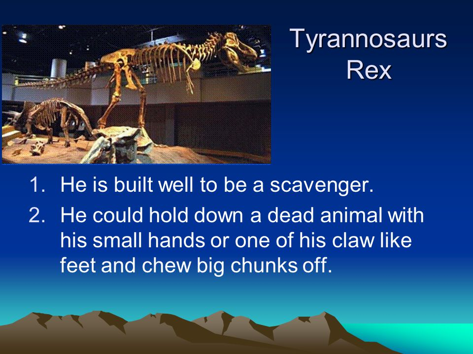 Tyrannosaurs Rex 1.He is built well to be a scavenger.