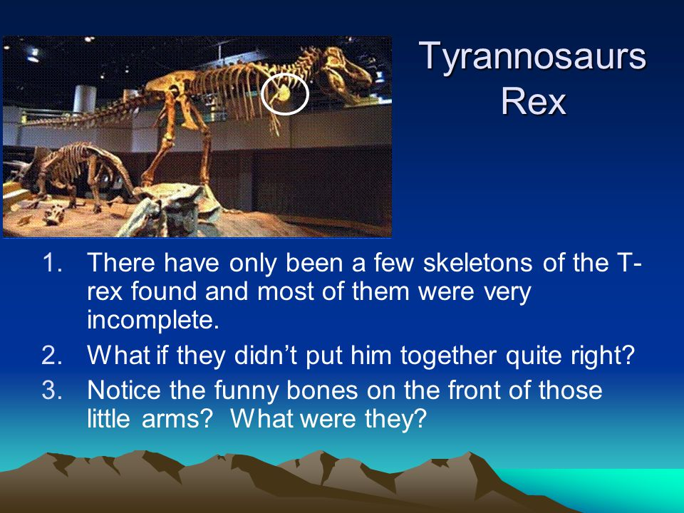 Tyrannosaurs Rex 1.There have only been a few skeletons of the T- rex found and most of them were very incomplete.
