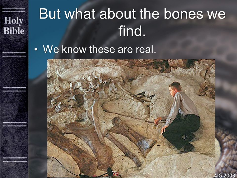 But what about the bones we find. We know these are real.We know these are real.