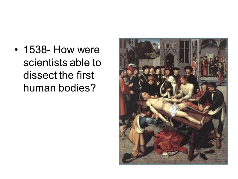 1538- How were scientists able to dissect the first human bodies?