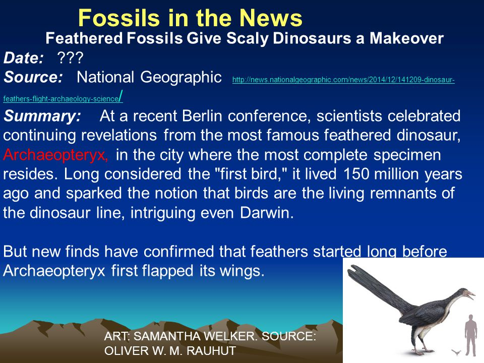 Fossils in the News Feathered Fossils Give Scaly Dinosaurs a Makeover Date: .