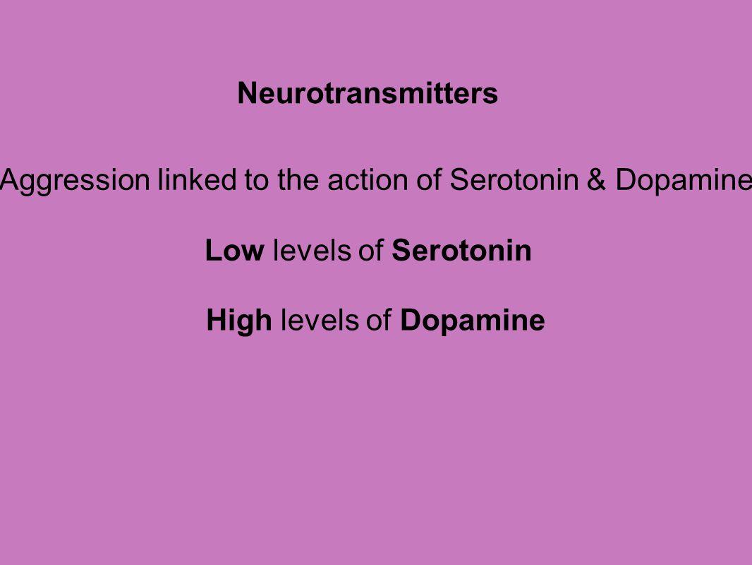 Neurotransmitters Aggression linked to the action of Serotonin & Dopamine Low levels of Serotonin High levels of Dopamine