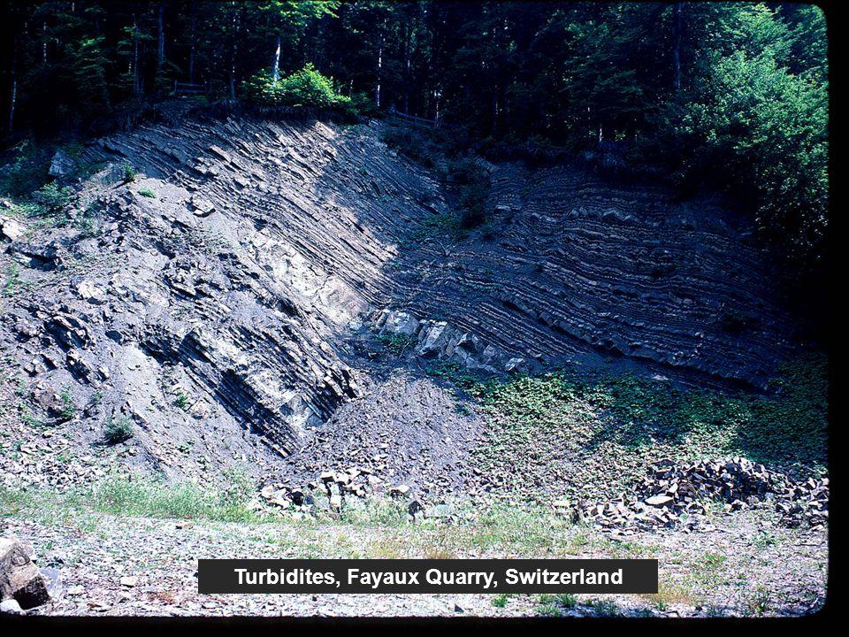 Turbidites, Fayaux Quarry, Switzerland