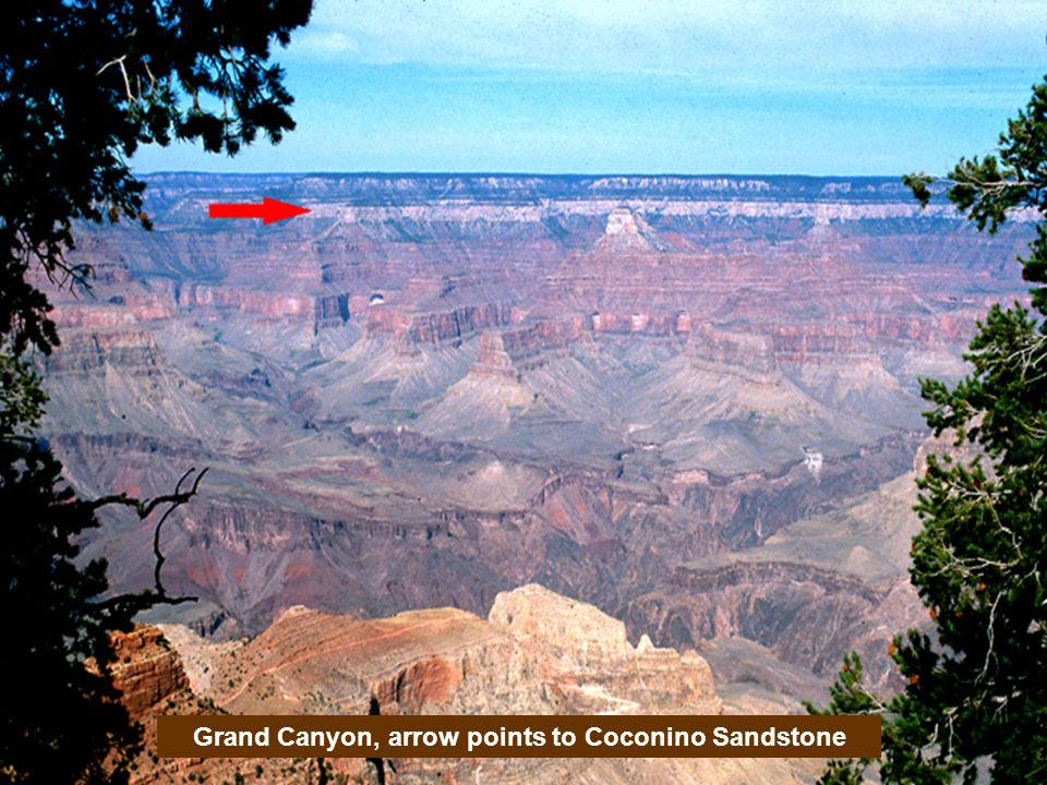 Grand Canyon, arrow points to Coconino Sandstone