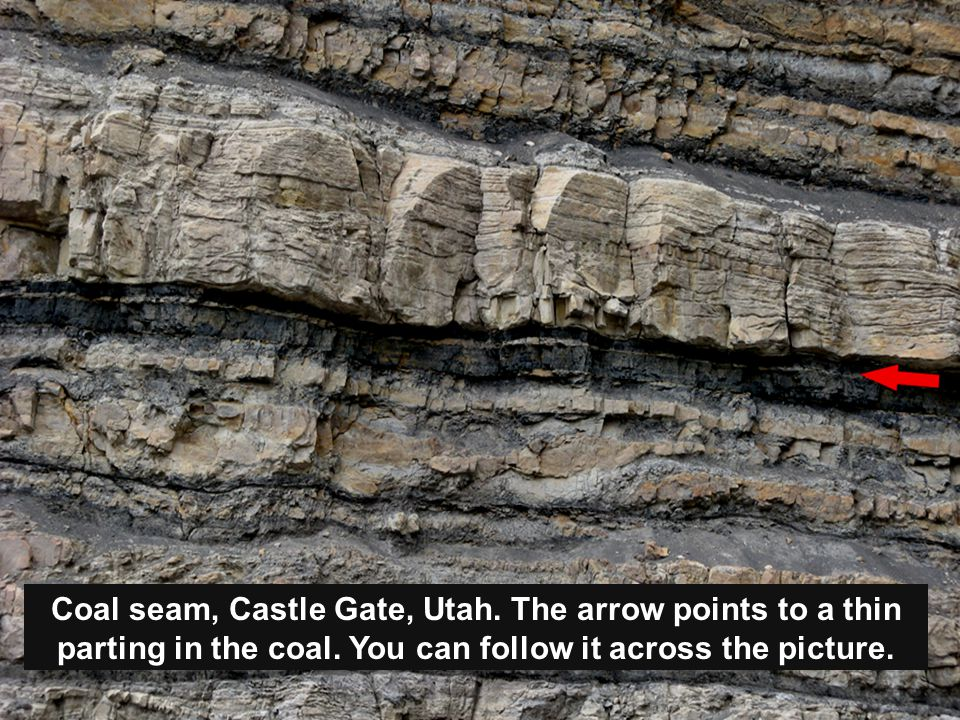 Coal seam, Castle Gate, Utah. The arrow points to a thin parting in the coal.