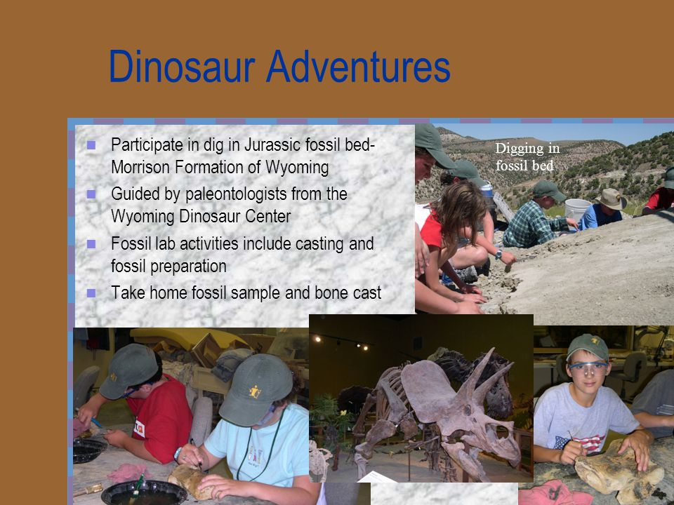 Dinosaur Adventures Participate in dig in Jurassic fossil bed- Morrison Formation of Wyoming Guided by paleontologists from the Wyoming Dinosaur Center Fossil lab activities include casting and fossil preparation Take home fossil sample and bone cast Digging in fossil bed