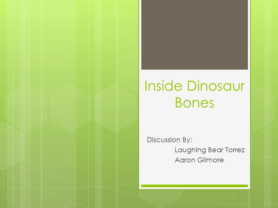 Conclusion  Dinosaur bone microstructure is well preserved, and has been used to understand the various bone tissue types that existed in dinosaurs.