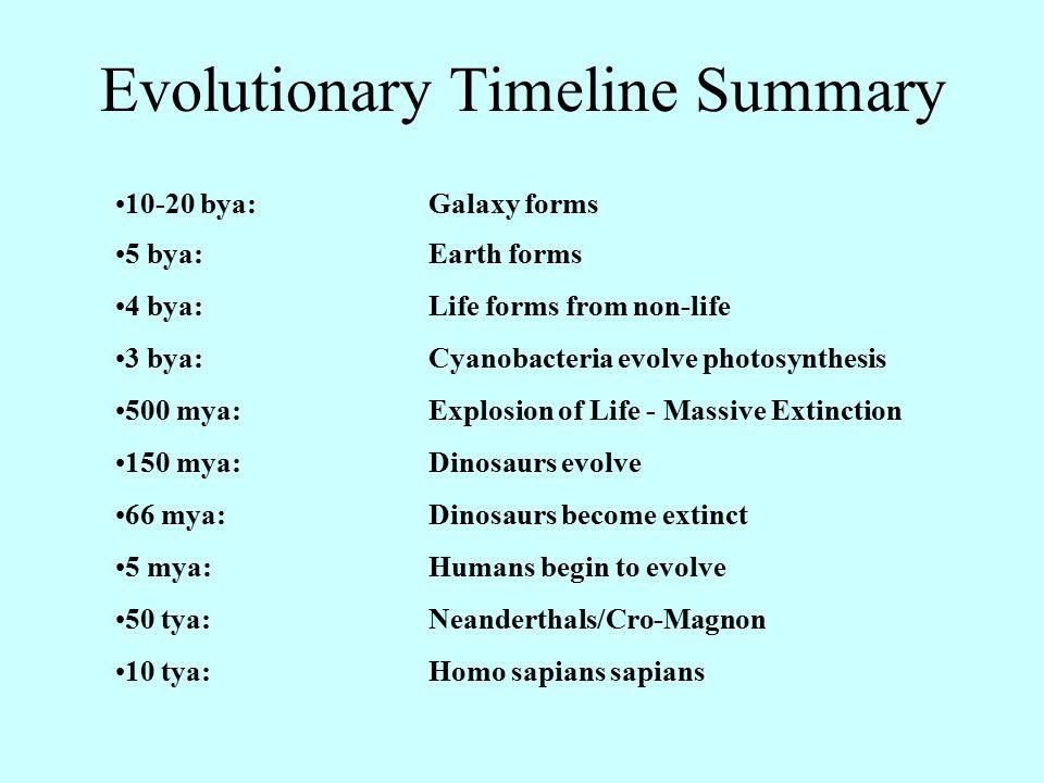 Evolutionary Timeline Summary 10-20 bya:Galaxy forms 5 bya:Earth forms 4 bya:Life forms from non-life 3 bya:Cyanobacteria evolve photosynthesis 500 my