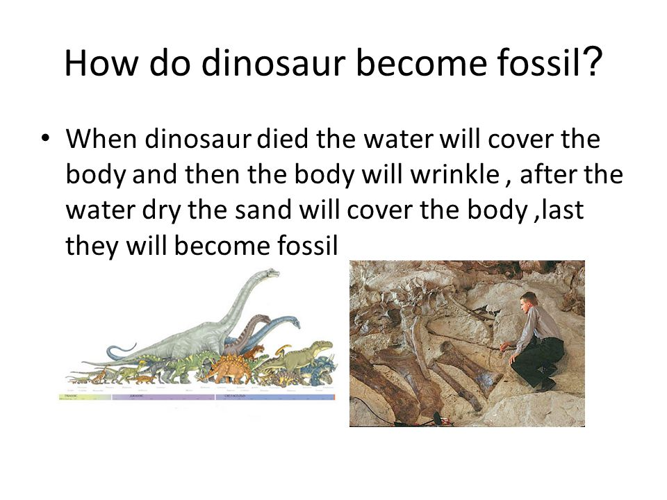 How do dinosaur become fossil.