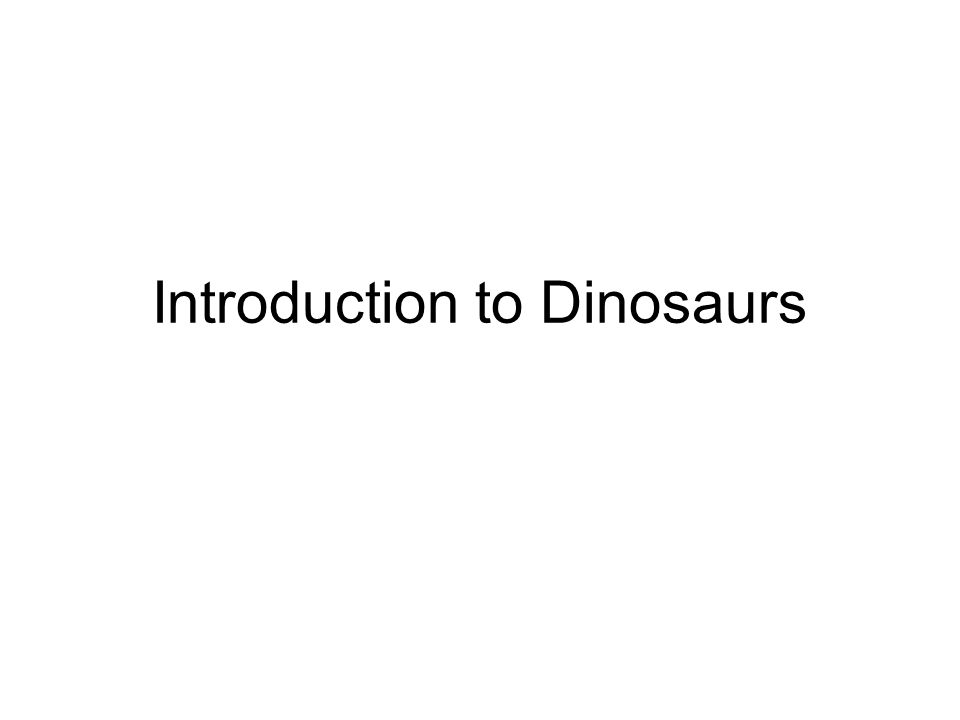 Introduction to Dinosaurs