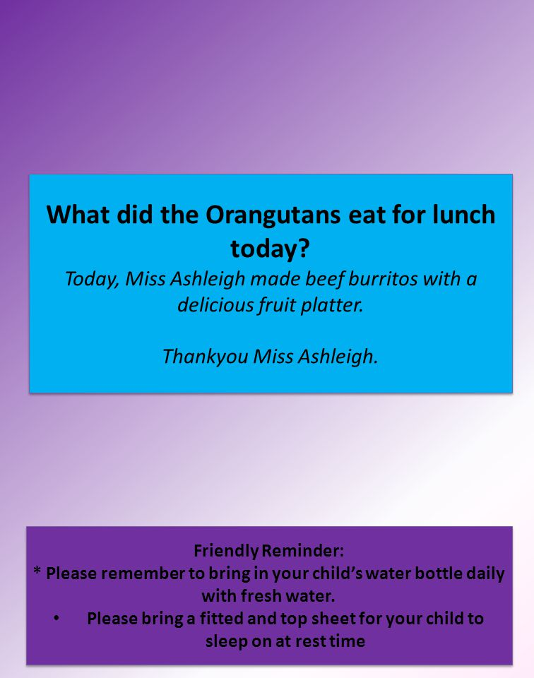 What did the Orangutans eat for lunch today? Today, Miss Ashleigh made beef burritos with a delicious fruit platter. Thankyou Miss Ashleigh. Friendly