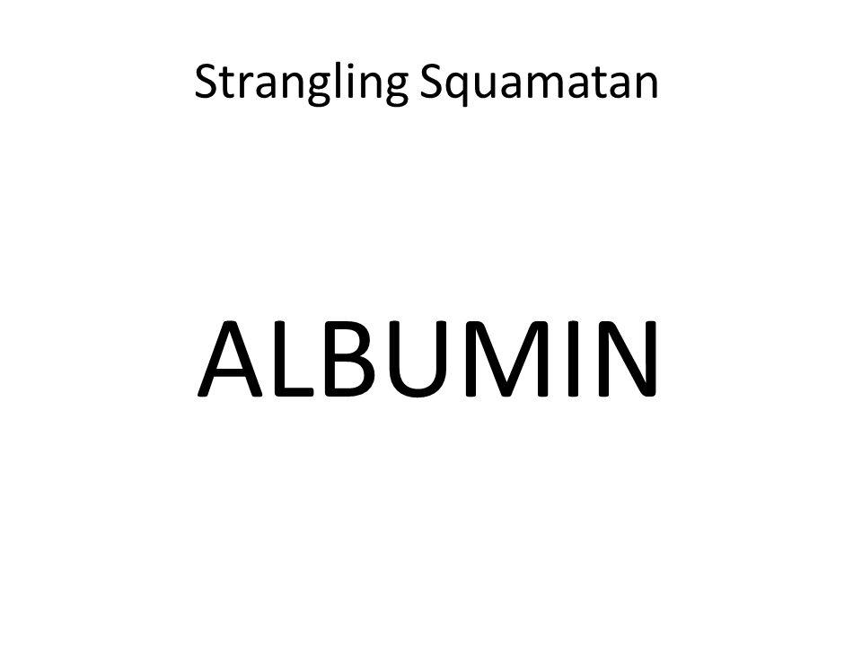 Strangling Squamatan ALBUMIN