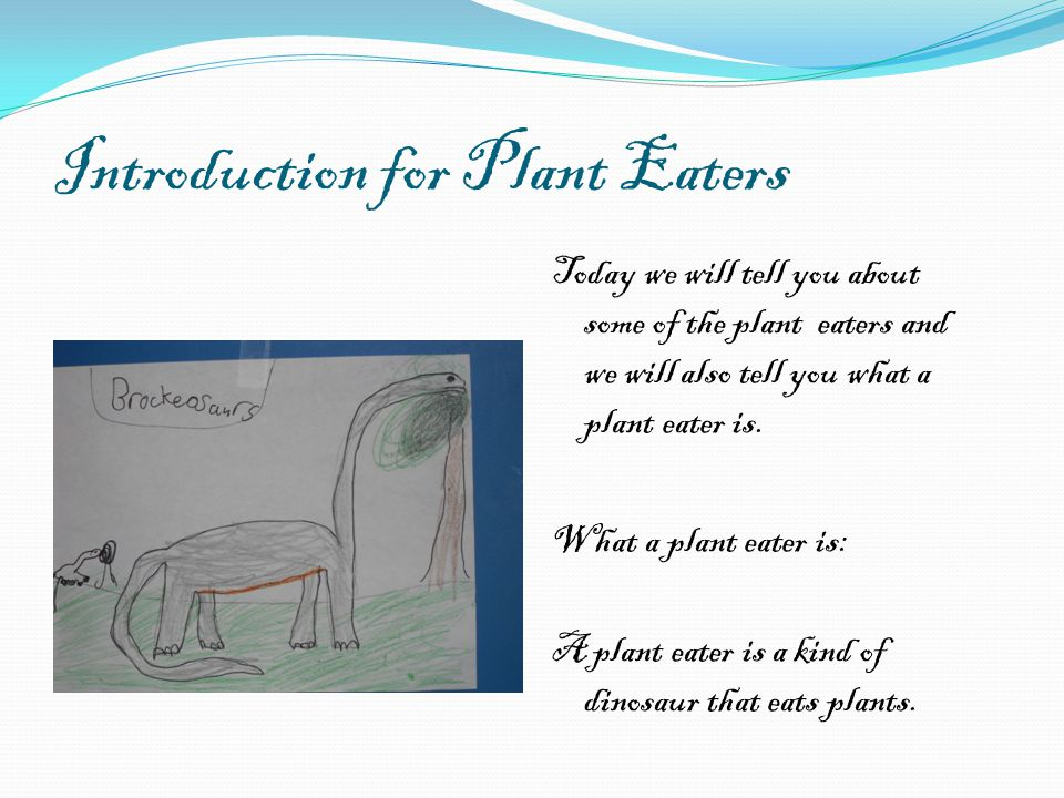 Introduction for Plant Eaters Today we will tell you about some of the plant eaters and we will also tell you what a plant eater is.