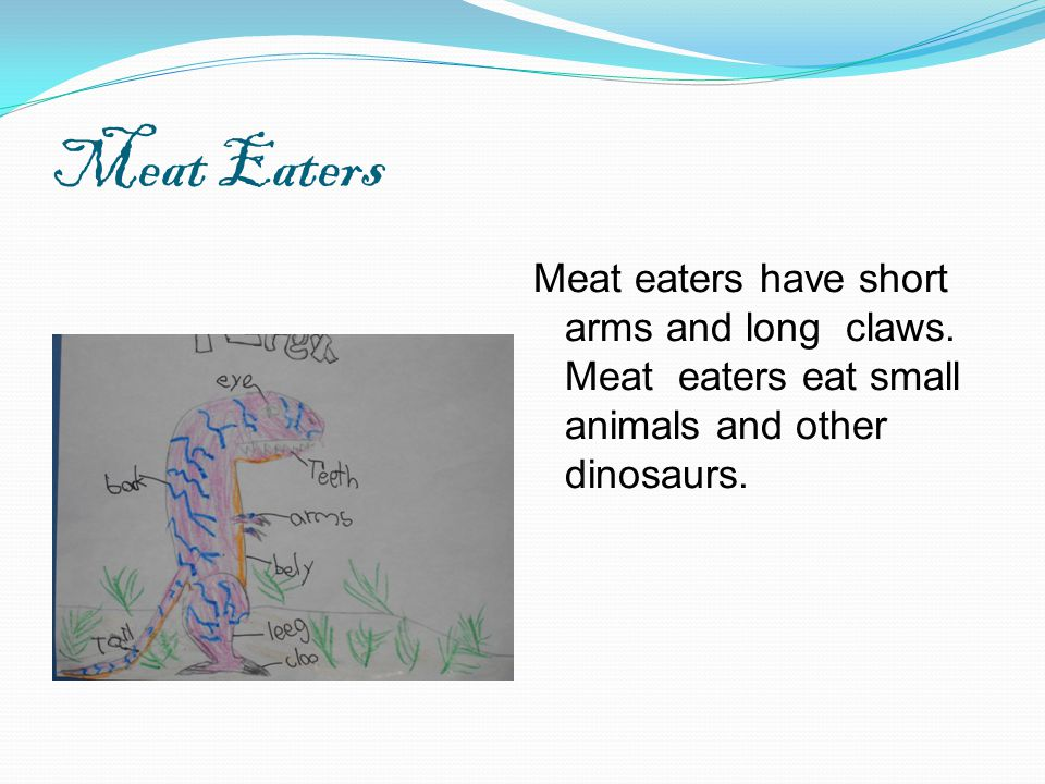 Meat Eaters Meat eaters have short arms and long claws.
