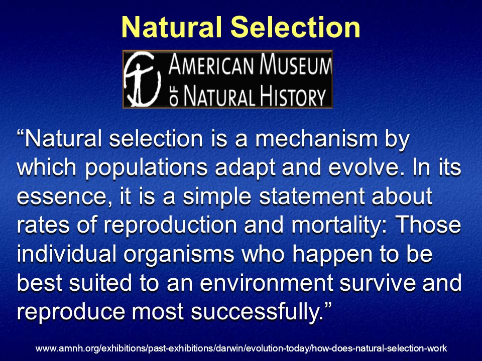 Natural Selection Natural selection is a mechanism by which populations adapt and evolve.