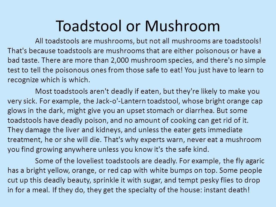 Toadstool or Mushroom All toadstools are mushrooms, but not all mushrooms are toadstools.