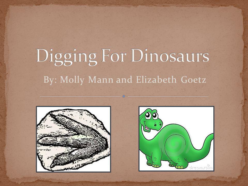 By: Molly Mann and Elizabeth Goetz