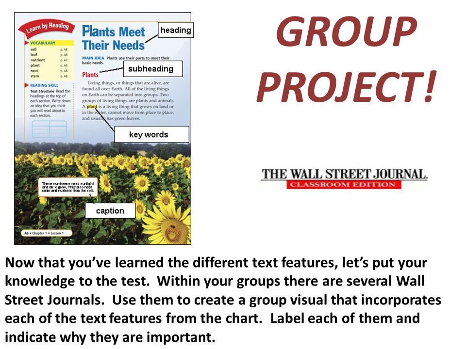 GROUP PROJECT! Now that you've learned the different text features, let's put your knowledge to the test. Within your groups there are several Wall St