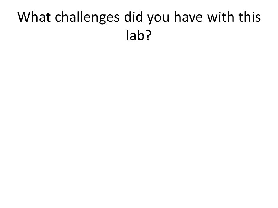 What challenges did you have with this lab