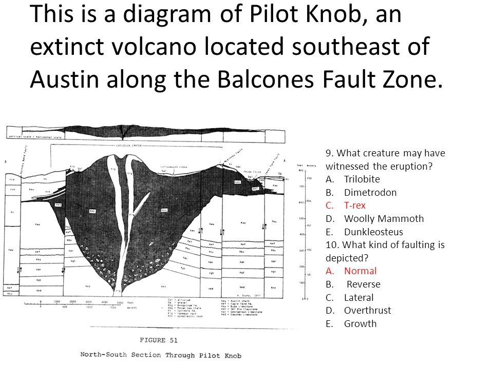 This is a diagram of Pilot Knob, an extinct volcano located southeast of Austin along the Balcones Fault Zone. 9. What creature may have witnessed the