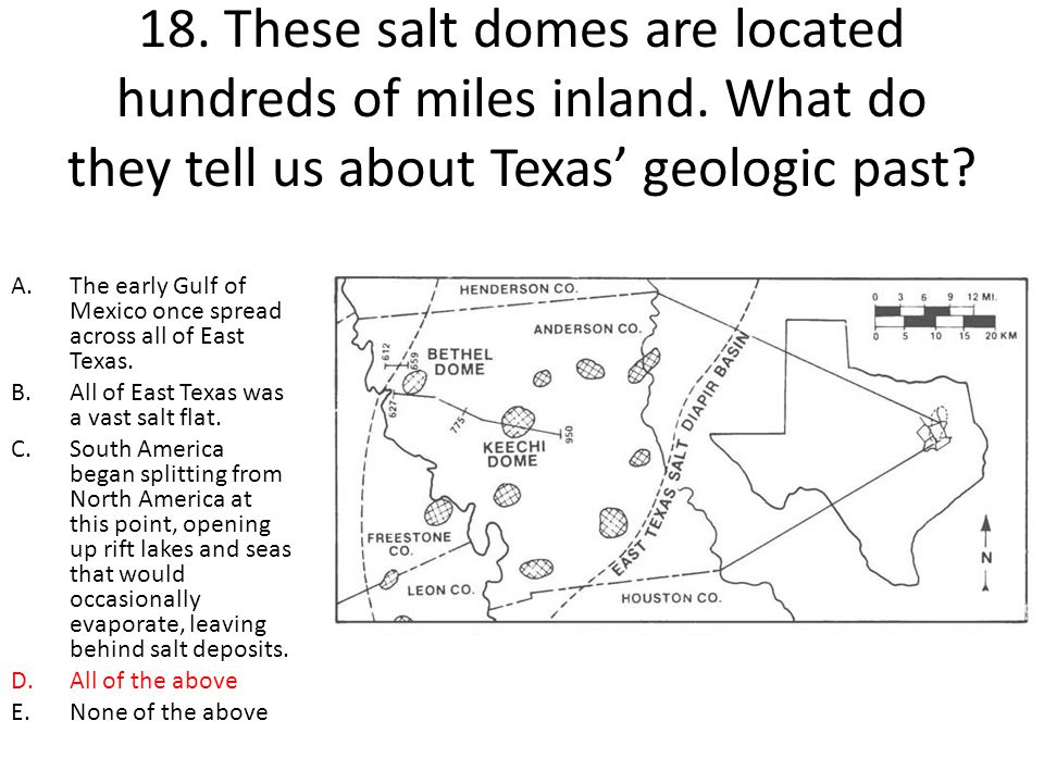18. These salt domes are located hundreds of miles inland. What do they tell us about Texas' geologic past? A.The early Gulf of Mexico once spread acr