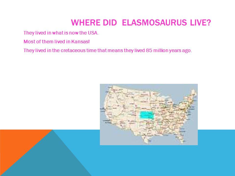 ELASMOSAURUS CHARACTERISTICS. Elasmosaurus was as long and as wide as a bus! They had 46 feet long neck! They swam slowly through the sea. Elasmosauru