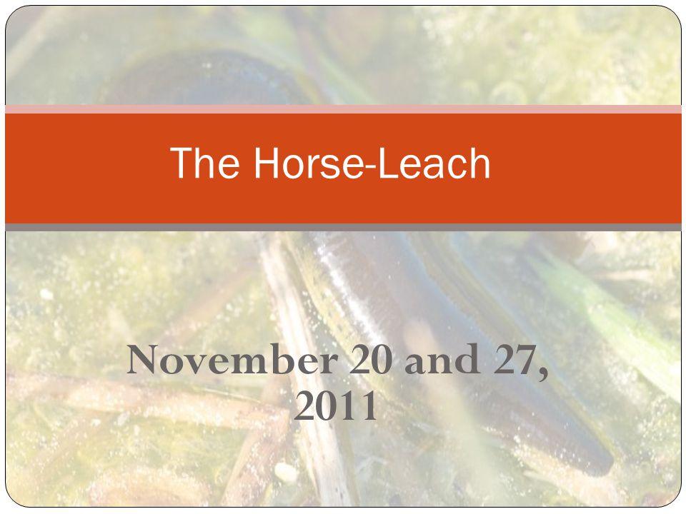 November 20 and 27, 2011 The Horse-Leach