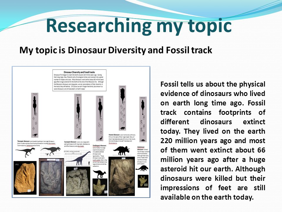 Researching my topic My topic is Dinosaur Diversity and Fossil track Fossil tells us about the physical evidence of dinosaurs who lived on earth long time ago.