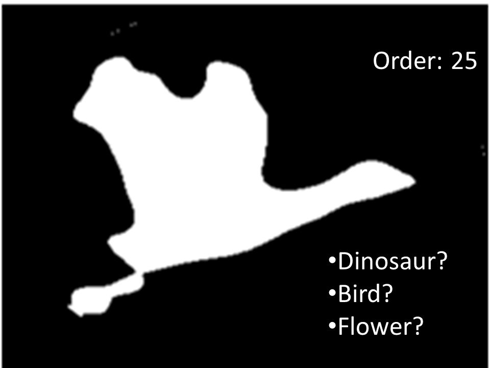 Dinosaur Bird Flower Order: 25