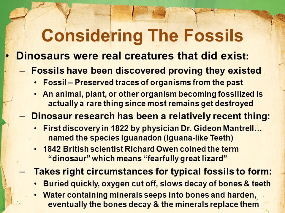 Considering The Fossils Dinosaurs were real creatures that did exis t: – Fossils have been discovered proving they existed Fossil – Preserved traces of organisms from the past An animal, plant, or other organism becoming fossilized is actually a rare thing since most remains get destroyed – Dinosaur research has been a relatively recent thing: First discovery in 1822 by physician Dr.