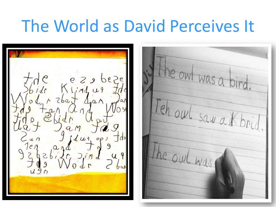 The World as David Perceives It