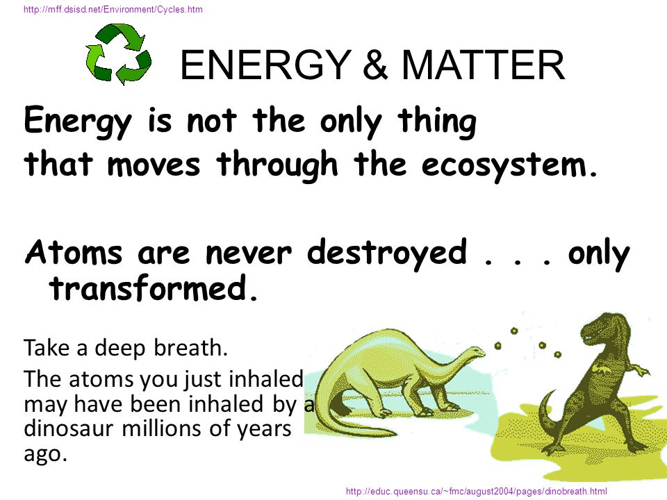 4 ATOMS make up 95% of the body in most organisms CARBON HYDROGEN OXYGEN NITROGEN The same molecules are passed around again and again within the biosphere in ___________________________ BIOGEOCHEMICAL CYCLES