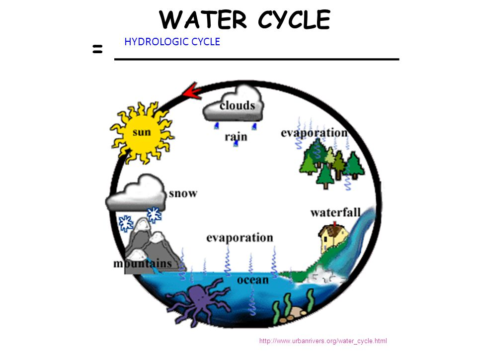 N 2 in Atmosphere NH 3 NO 3 - and NO 2 - Section 3-3 NITROGEN CYCLE BIOLOGY; Miller and Levine; Prentice Hall; 2006