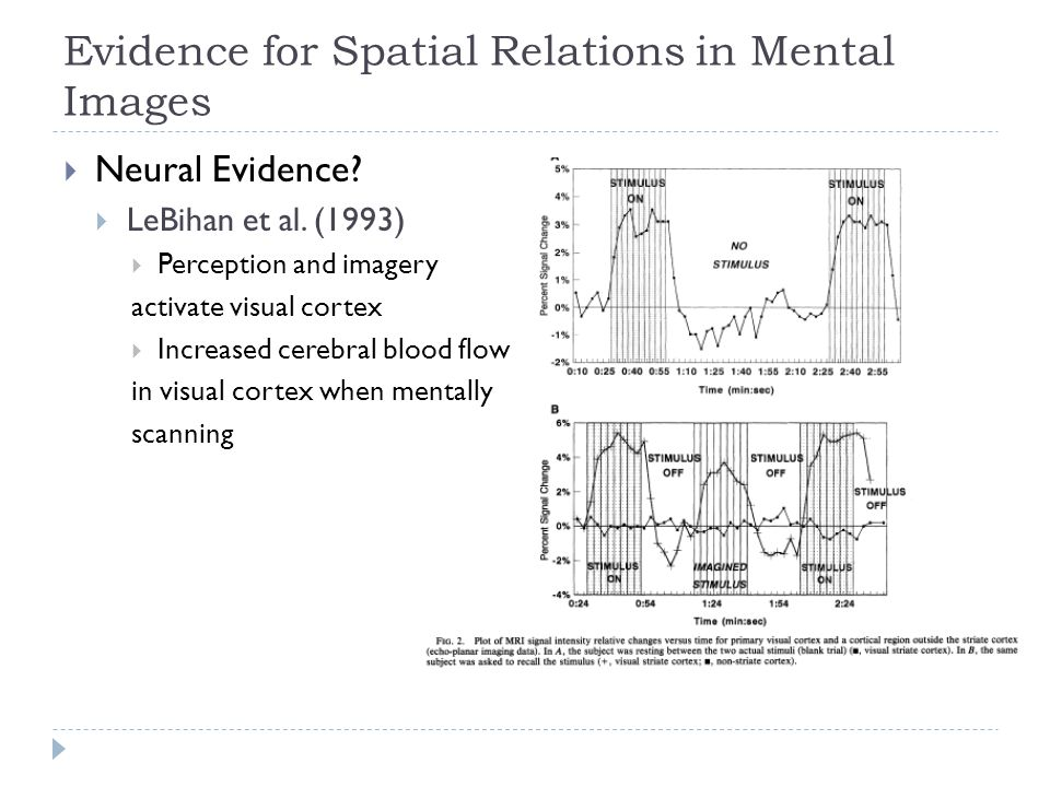 Evidence for Spatial Relations in Mental Images  Neural Evidence?  LeBihan et al. (1993)  Perception and imagery activate visual cortex  Increased