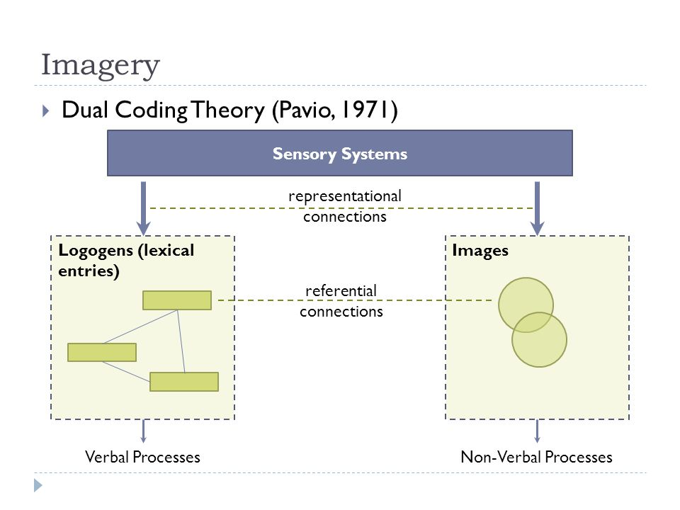 Imagery  Dual Coding Theory (Pavio, 1971) Sensory Systems Logogens (lexical entries) Images Verbal ProcessesNon-Verbal Processes representational connections referential connections