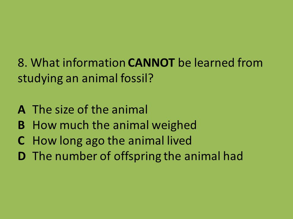 8. What information CANNOT be learned from studying an animal fossil? A The size of the animal B How much the animal weighed C How long ago the animal
