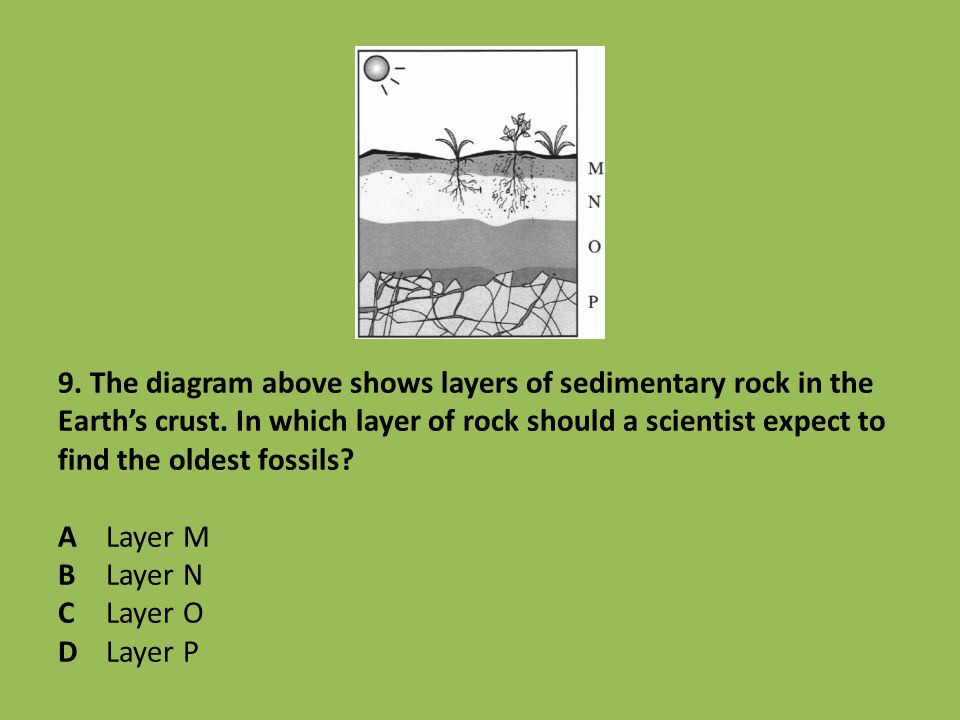 9. The diagram above shows layers of sedimentary rock in the Earth's crust. In which layer of rock should a scientist expect to find the oldest fossil