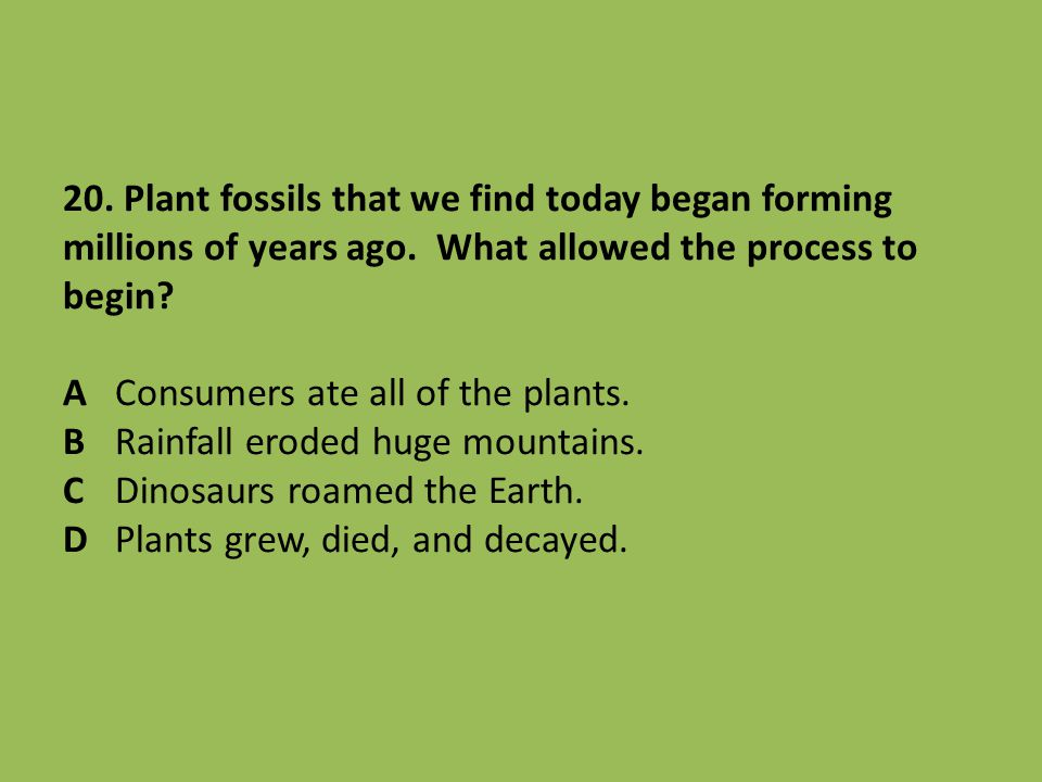 20. Plant fossils that we find today began forming millions of years ago. What allowed the process to begin? AConsumers ate all of the plants. BRainfa
