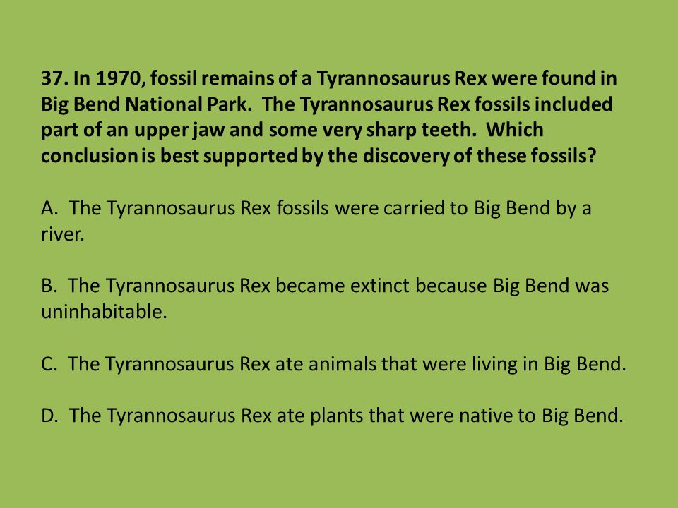 37. In 1970, fossil remains of a Tyrannosaurus Rex were found in Big Bend National Park. The Tyrannosaurus Rex fossils included part of an upper jaw a