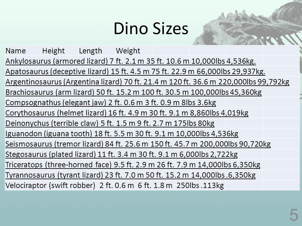 Dino Sizes 6 NameHeightLengthWeight Ankylosaurus (armored lizard) 7 ft.